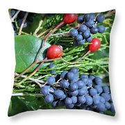 Birdies Bounty Throw Pillow by Kristin Elmquist