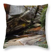 Birdrock Waterfall Throw Pillow