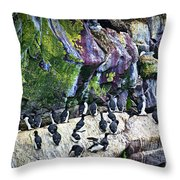 Birds At Cape St. Mary's Bird Sanctuary In Newfoundland Throw Pillow