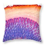 Birds Gizzard Throw Pillow by M. I. Walker