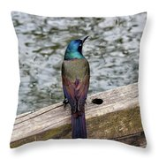 Birds Of A Feather Don't.. Throw Pillow
