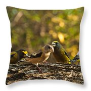 Birds Of Yellow Throw Pillow