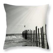 Birds On Outer Banks Throw Pillow