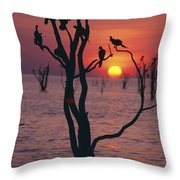 Birds On Tree, Lake Kariba At Sunset Throw Pillow by Axiom Photographic