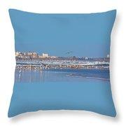 Birds Only Beach Throw Pillow
