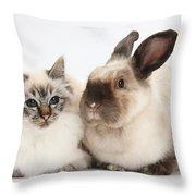 Birman Cat And Colorpoint Rabbit Throw Pillow