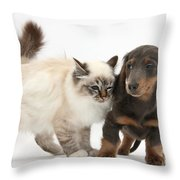 Birman Cat And Dachshund Puppy Throw Pillow