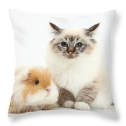 Birman Cat And Frizzy Guinea Pig Throw Pillow
