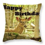 Birthday Greeting Card - Whitetail Deer Buck In Velvet Throw Pillow