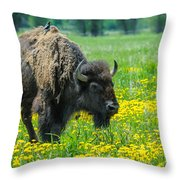 Bison And Friend Throw Pillow