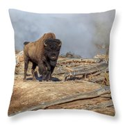 Bison And Geyser Throw Pillow