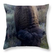 Bison At Ease Throw Pillow