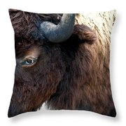 Bison Bison Up Close Throw Pillow