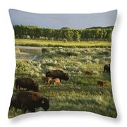 Bison Graze On Grasslands In The Park Throw Pillow