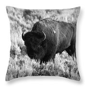 Bison In Black And White Throw Pillow