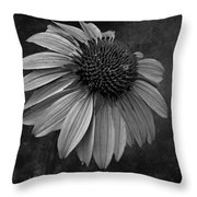 Bittersweet Memories - Bw Throw Pillow