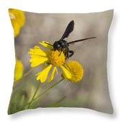 Bitterweed And Black Wasp Throw Pillow