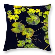 Black And Green Throw Pillow