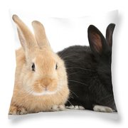 Black And Sandy Rabbits Throw Pillow