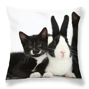 Black And Tuxedo Kittens With Dutch Throw Pillow