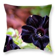 Black And Velvety Throw Pillow