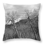 Black And White Aspen Throw Pillow