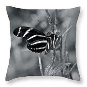 Black And White Butterfly Throw Pillow