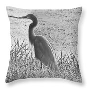 Black And White Egret  Throw Pillow