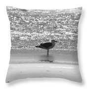 Black And White Gull Throw Pillow