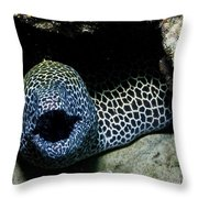 Black And White Honeycomb Moray Eel Throw Pillow