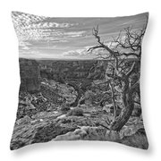 Black And White Image Of Tree Throw Pillow