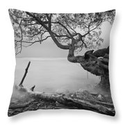 Black And White Mystic Lake Throw Pillow