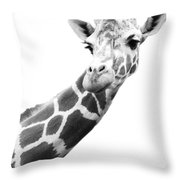 Black And White Portrait Of A Giraffe Throw Pillow