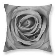 Black And White Spiral Rose Petals Throw Pillow