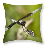 Black And White Widow Skimmer Dragonfly Throw Pillow