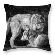 Black And White Wolves Throw Pillow