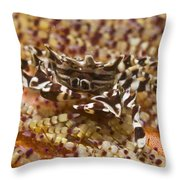 Black And White Zebra Crab On Fire Throw Pillow