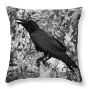 Black As The Night Throw Pillow