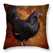 Black Bantam Chicken Throw Pillow