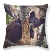 Black Bear Cub No 3224 Throw Pillow