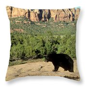 Black Bear In Utah Throw Pillow