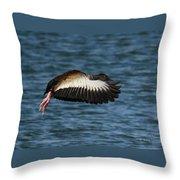 Black-belled Whistling-duck In Flight Throw Pillow