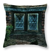 Black Birds Sitting On Roof By Window Throw Pillow