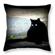 Black Cat Beauty Throw Pillow