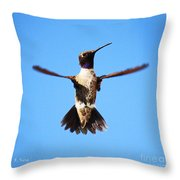 Black-chinned Hummingbird Flying Throw Pillow