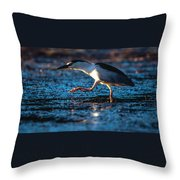 Black-crowned Night Heron Throw Pillow