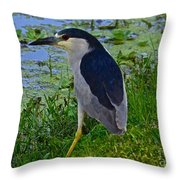 Black Crowned Night Heron II Throw Pillow
