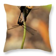 Black Dragonfly Love Throw Pillow