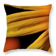 Black Eyed Susan Petal Throw Pillow