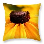 Black Eyed Susan Summer Throw Pillow